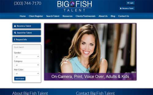 Big Fish Talent
