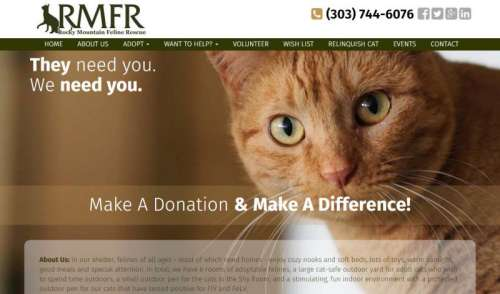 Rocky Mountain Feline Rescue