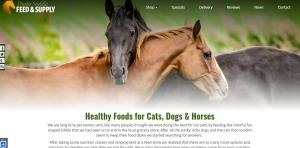 website-design-for-animals