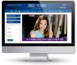 web-design-for-big-fish-talent