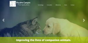 web-design-for-poudre-canyon-therap