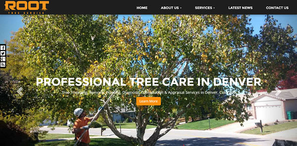 New Website Launched: Root Tree Services