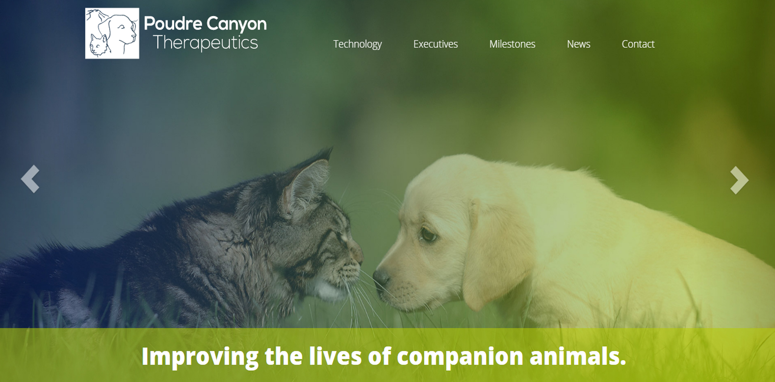 New Website Launched: Poudre Canyon Therapeutics